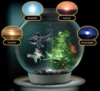 شبیه ساز نور طبیعی در آکواریوم ها
