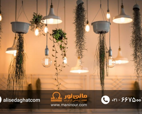 لامپ فیلامنتی در مانی نور